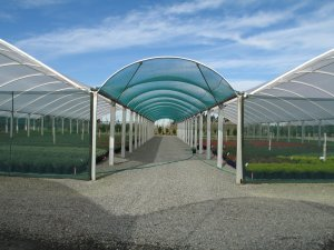 Greenhouse Shadehouse Tunnelhouse Crop Cover Crop